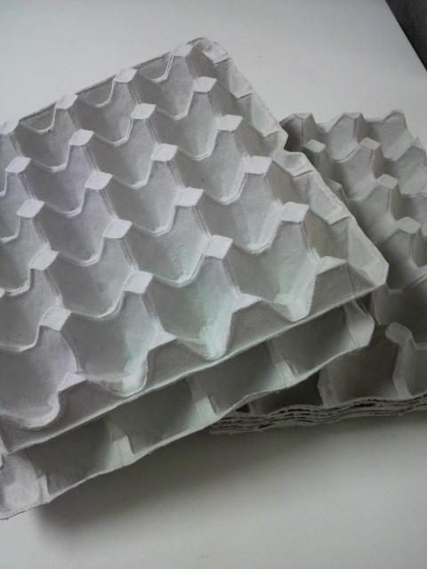 卵の紙ケース
