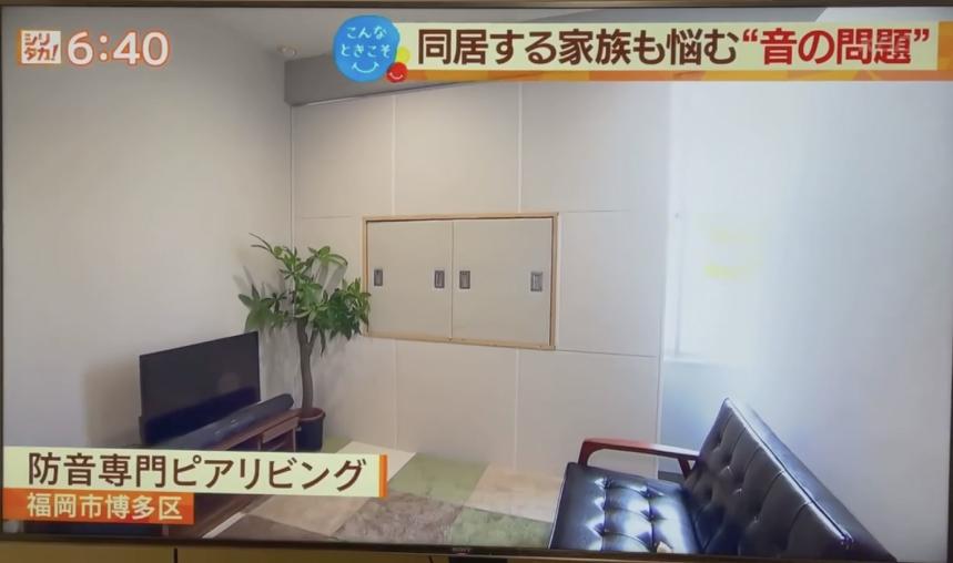 ピアリビング テレビ放送2